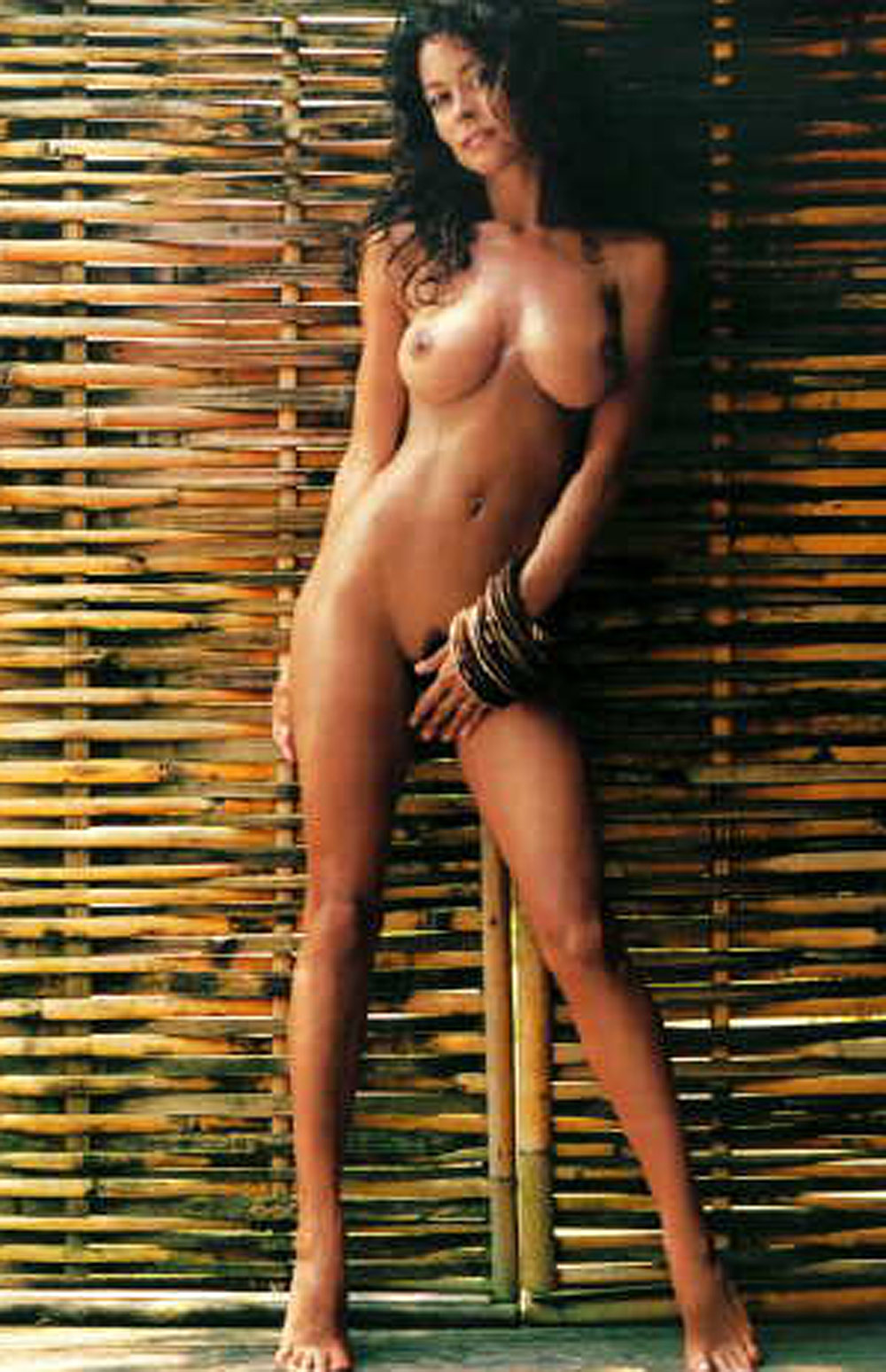Brooke burke nipples