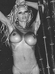 Pamela Anderson big bare boobs and upskirt panties