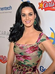 Katy Perry on dream foundation celebration